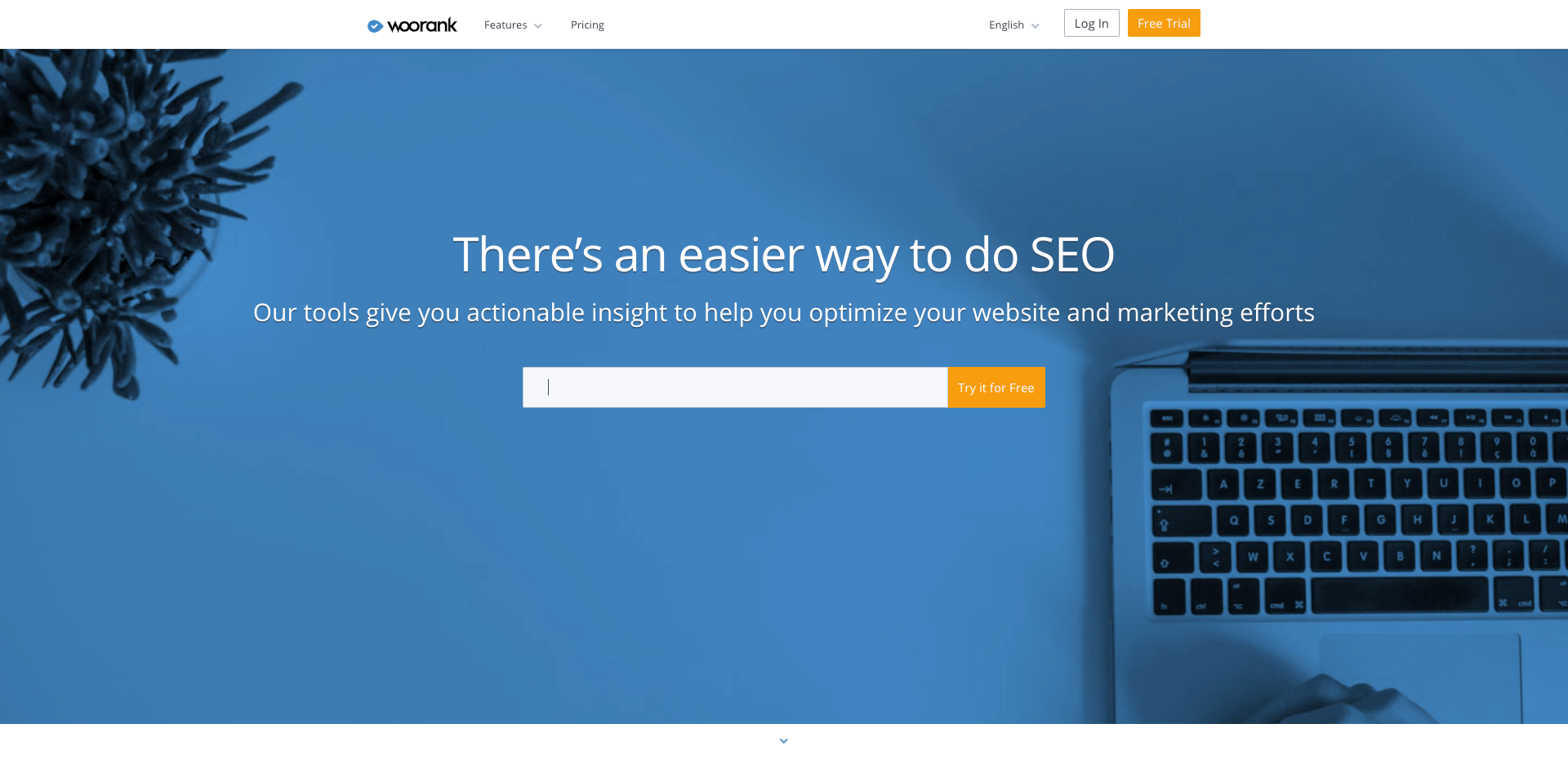 Instant SEO Checker & SEO Audit Tool.